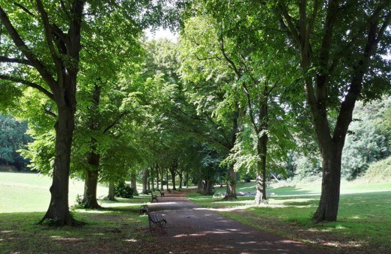Park walk 3